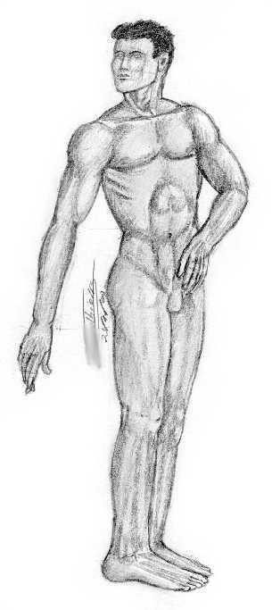 corps homme dessin